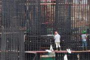 portuguese construction news