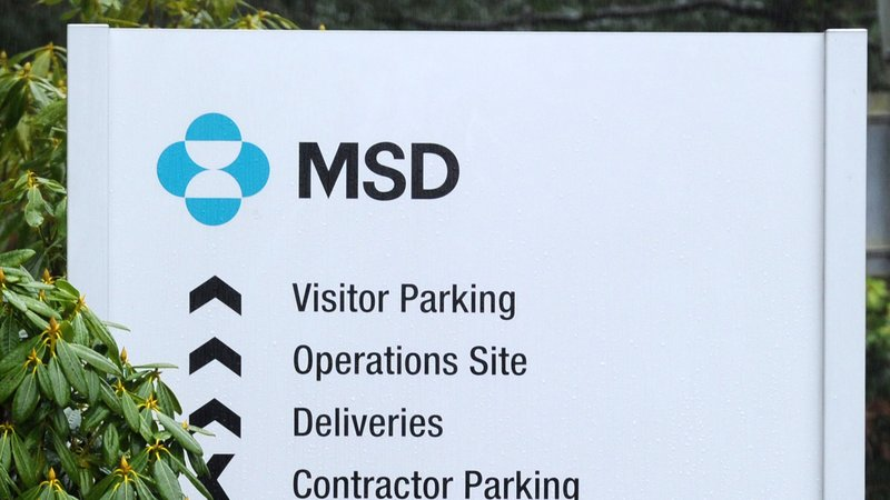 MSD to create 350 jobs at former Swords plant   Oradeo